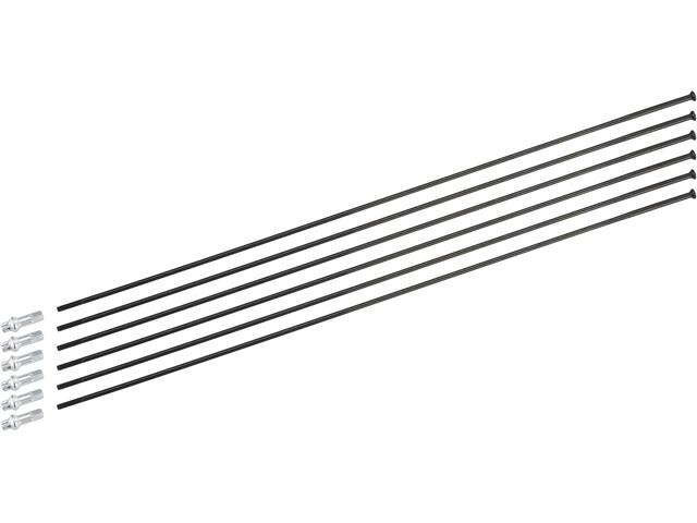 DT Swiss Kit raggi per PR 1600 Spline 23 mm nero
